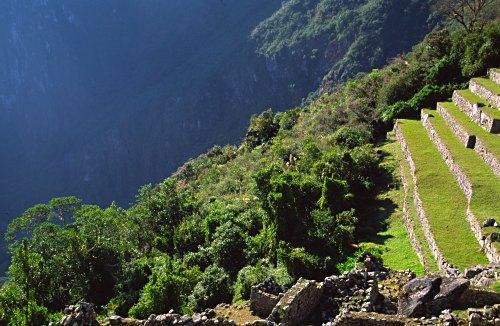 鮮やかな緑に映えるアンデネスの遺跡 壁紙