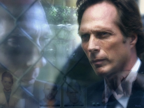 William Fichtner Wallpaper Called Mahone