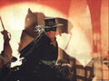 Mask of Zorro - antonio-banderas wallpaper