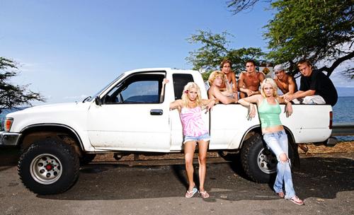 Maui Fever Cast