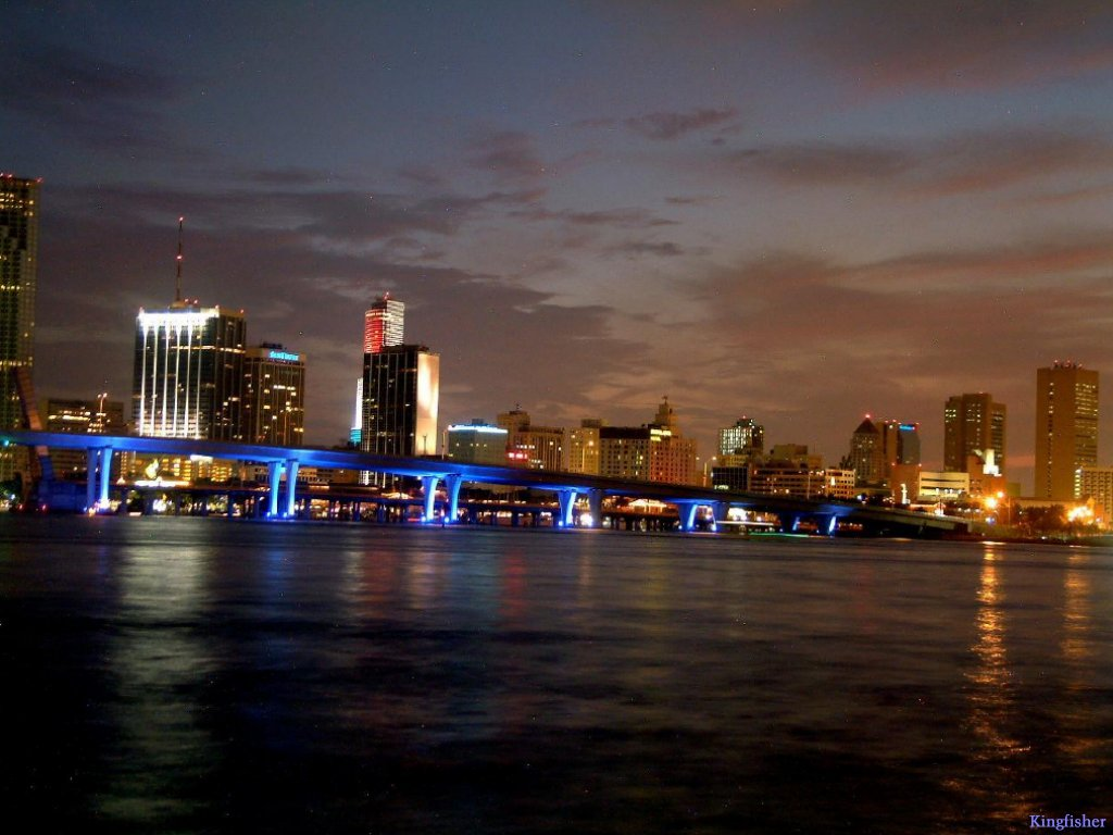 Miami Images Night HD Wallpaper And Background Photos