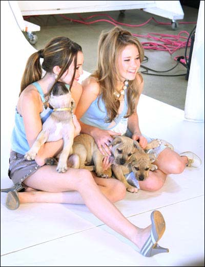 Miley with her dogs