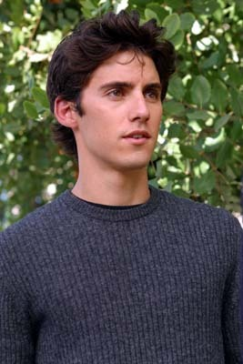 Milo In Gilmore Girls