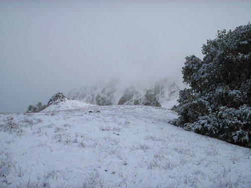 Mission Peak, CA, February 06