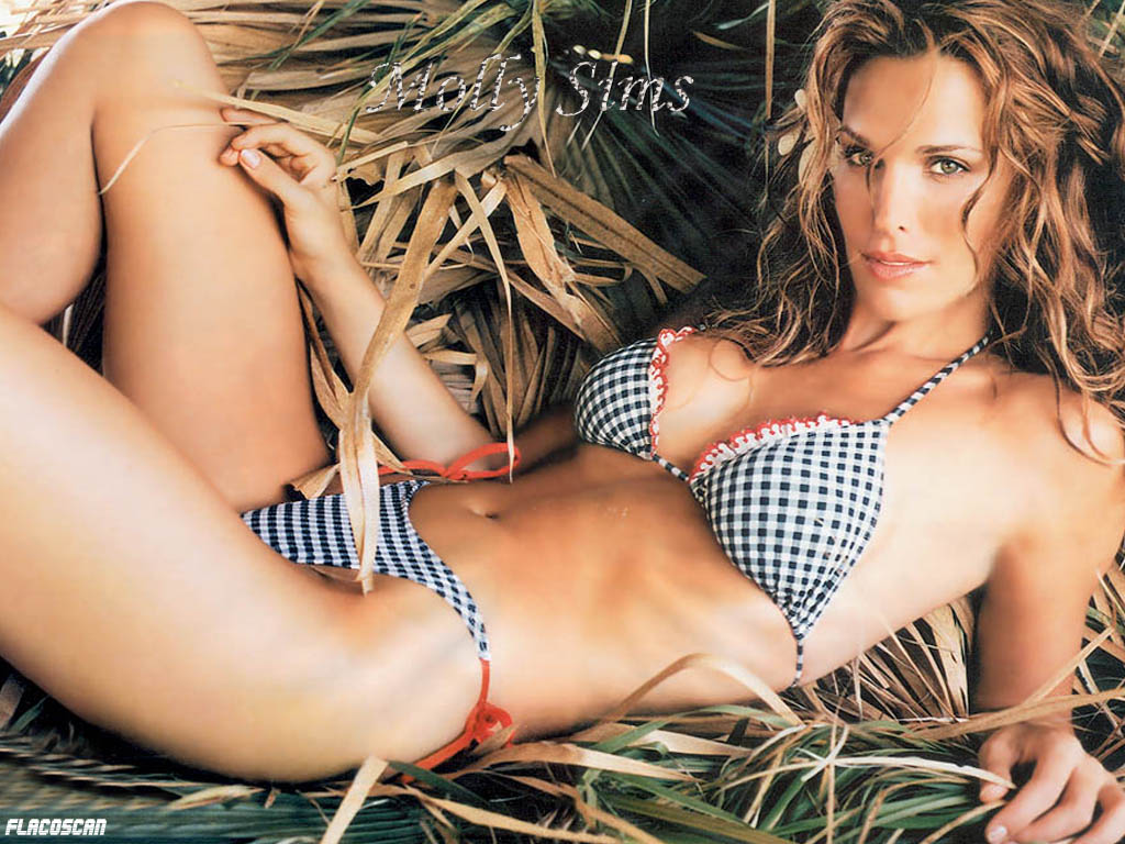 Molly Sims - Picture Gallery