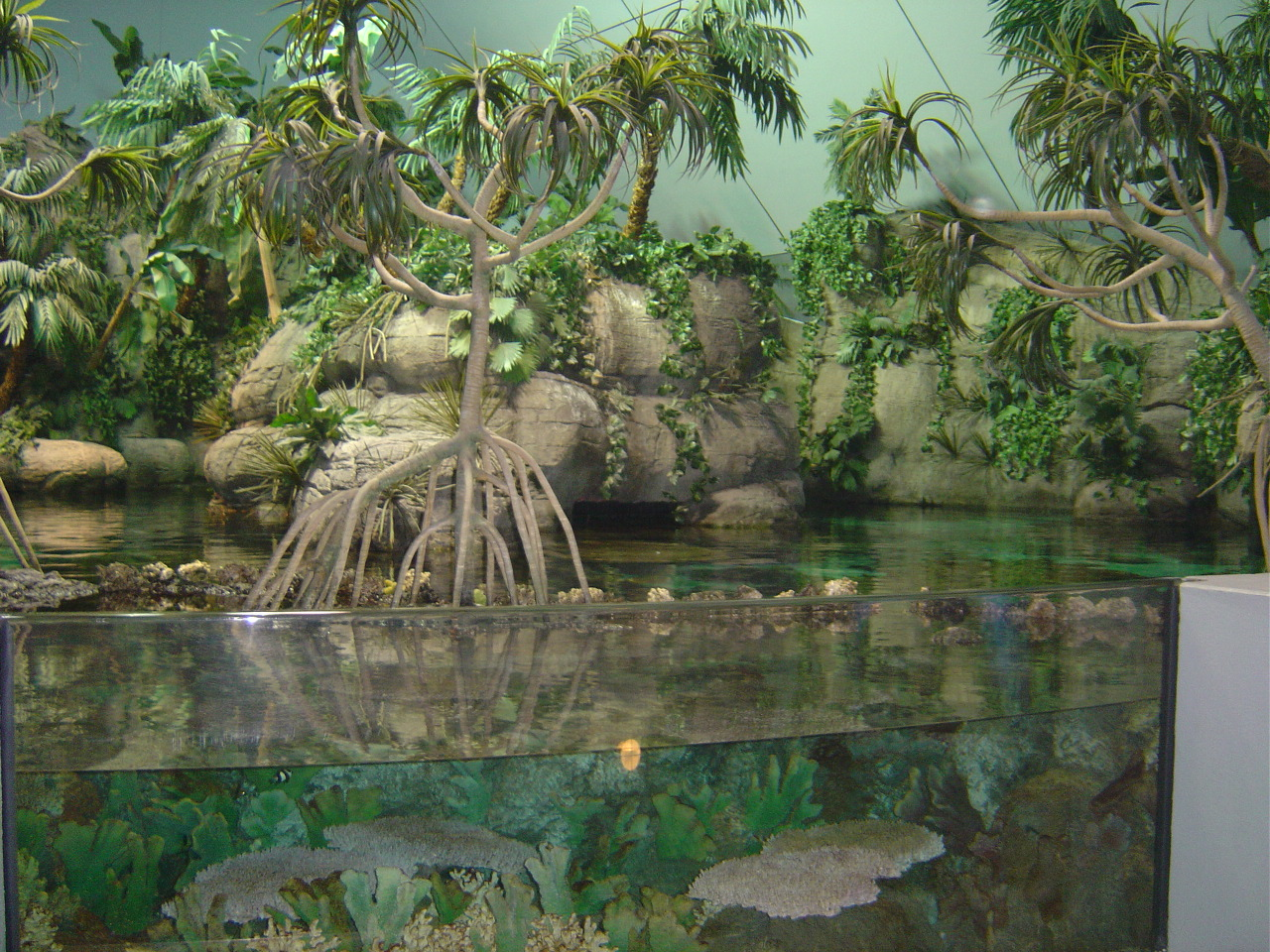 Moody Gardens in Galveston - Texas Photo (250626) - Fanpop