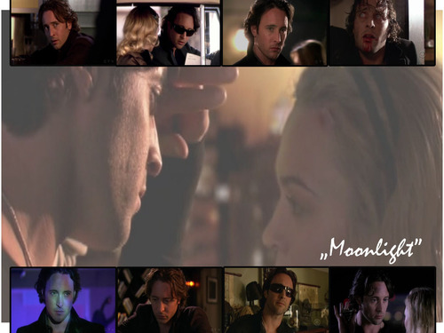 Moonlight_3 - alex-oloughlin Wallpaper