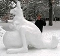 Snow カンガルー