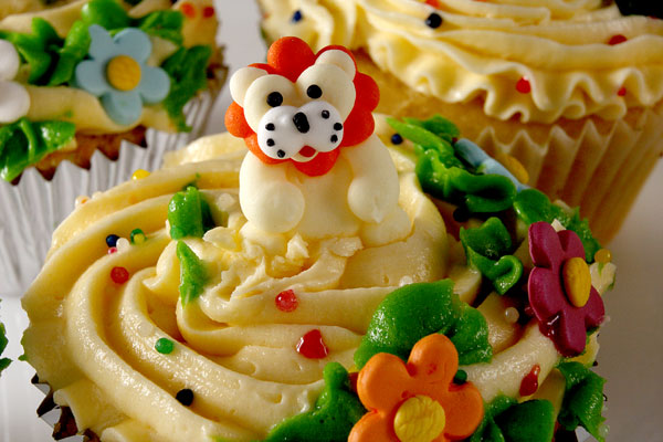 Funny Lion Cupcakes