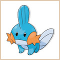 Mudkip - mudkip-marshtomp-and-swampert photo