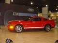 Mustang GT - muscle-cars photo