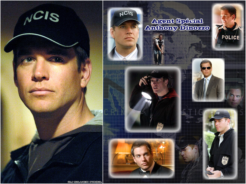 http://images.fanpop.com/images/image_uploads/NCIS-Tony-DiNozzo-ncis-669646_1024_768.jpg
