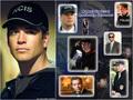 NCIS - Unità anticrimine Tony DiNozzo