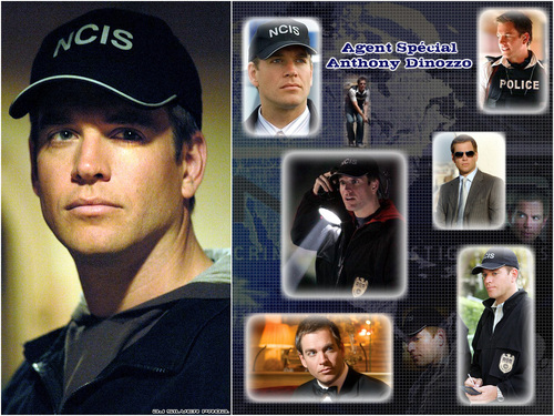 NCIS wallpaper titled NCIS Tony DiNozzo