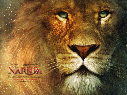 Narnia 2 - the-chronicles-of-narnia Wallpaper
