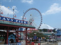 Navy Pier - chicago photo