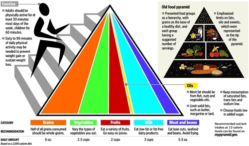 Food wallpaper titled New Fangled Food Pyramid