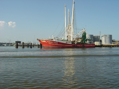 New Orleans - boating Photo