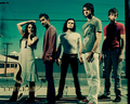 Nice pic - flyleaf wallpaper