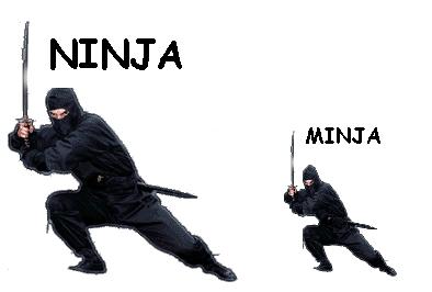 ask a ninja images ninja vs minja wallpaper and background photos