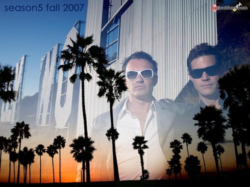 Nip/Tuck wallpaper titled Nip/Tuck
