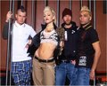 No Doubt - no-doubt photo
