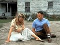 Not enough rocks - forrest-gump photo