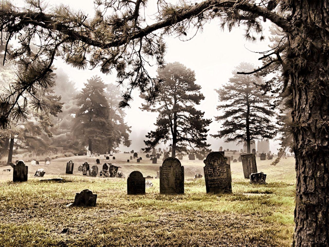 pics photos cemetery - photo #9