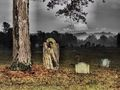 Old Cemetery - cemeteries-and-graveyards photo