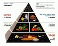 Old School Food Pyramid - food photo