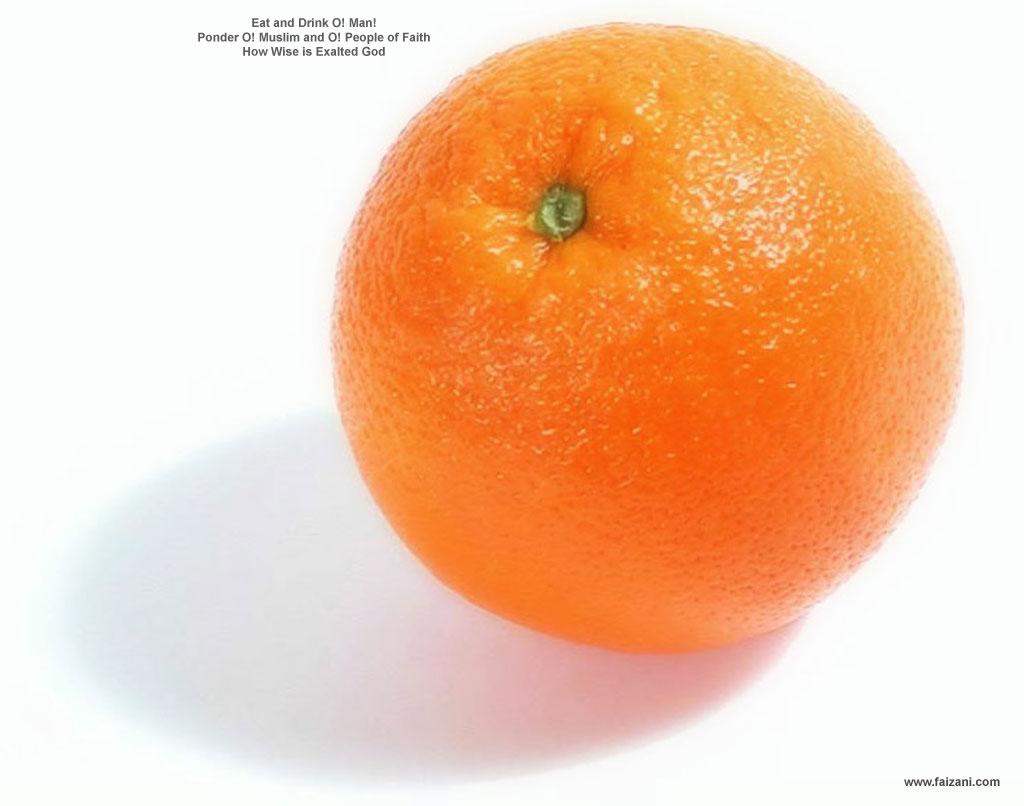 Orange - Orange Photo ...