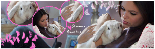 pannekoeken, pannenkoeken