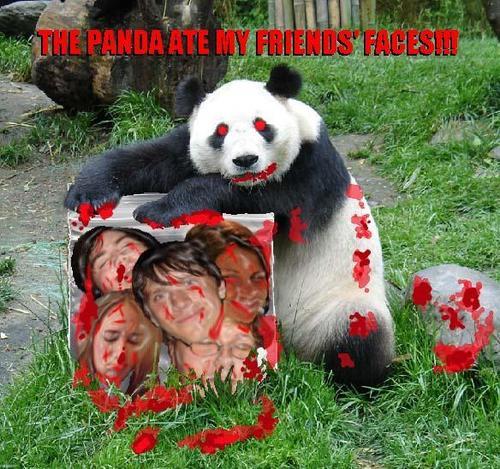 Panda Ate My Face