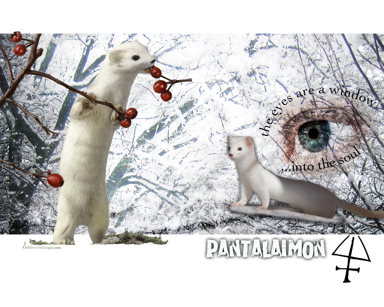 Pantalaimon