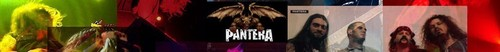 Pantera Banner
