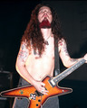 Pantera - pantera photo