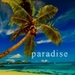 Paradise!!! - beaches icon