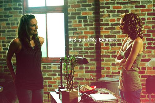Peyton&Lindsay