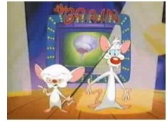 Pinky and the Brain Screen