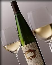 Pinot Grigio - wine Photo