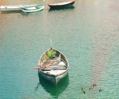 Portofino खाड़ी, बे
