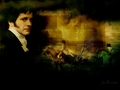 Pride and Prejudice - colin-firth wallpaper