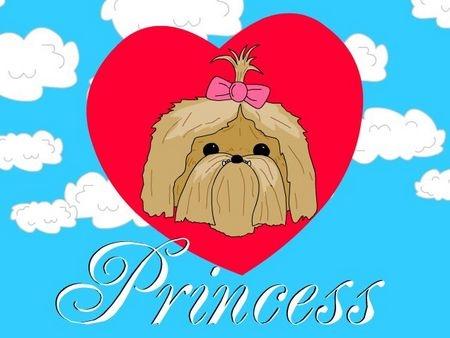 Princess pamagat Screen