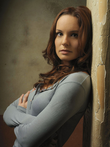 prison-break - Sara Tancredi photo