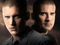Prison break-wallpaper1 - prison-break wallpaper