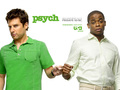 Psych 2007 - psych wallpaper