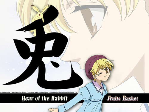 Rabbit - fruits-basket Wallpaper