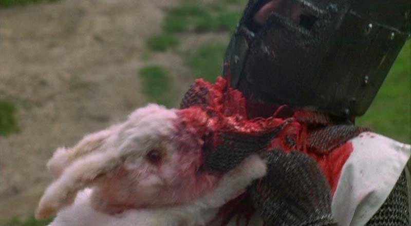 http://images.fanpop.com/images/image_uploads/Rabbit-monty-python-380150_800_441.jpg