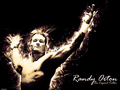 Randy Orton - wwe wallpaper