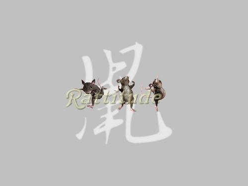 Rattitude - rat Symbol